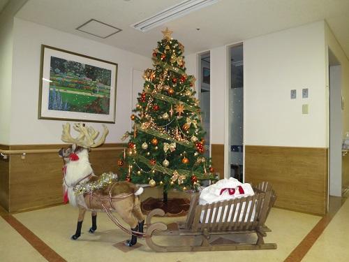 2014.11.15~12.26 イベント「クリスマス会」 西館1階の飾り